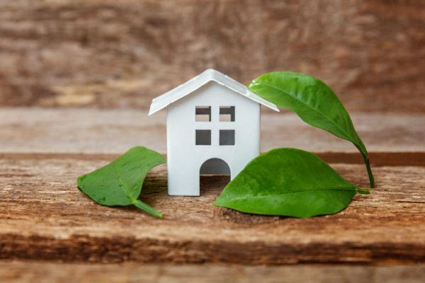 La rénovation écologique par AlloMarcel